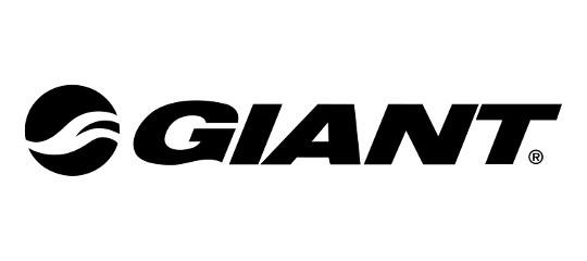 ob_155235_giant-1